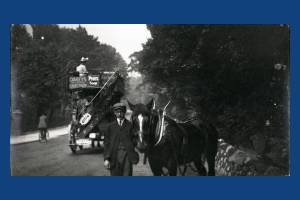 Jack the trace-horse and the local horsebus, Wimbledon Hill Road
