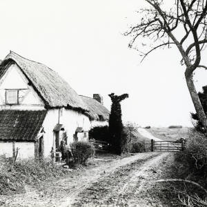 Broadmoor Common Cottage, Woolhope, 1923