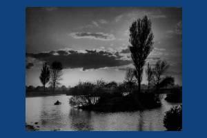 Commonside East: Seven Islands Ponds