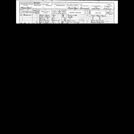 AF Ridout: Census extract 1891 Dorset