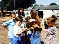 Deen City Farm: Youngsters feeding a young goat