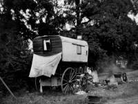 Morden Common: Gypsies