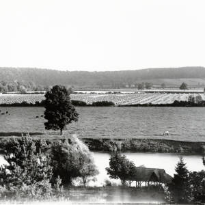 Hampton Park, view from terrace of croft