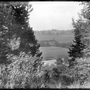 G36-240-01 Glimpse of a river looking down a steep bank framed by pine trees .jpg