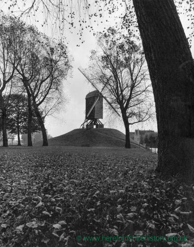 008 - View of park and windmill in Bruges