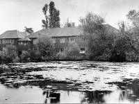 Morris & Co. Merton : The Mill pond