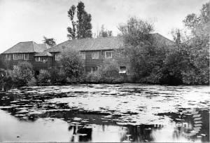 Morris & Co. Merton : The Mill pond