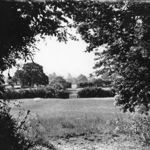 Cwm, Abbey Dore, Herefordshire, view