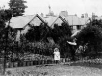 Mizen Brothers nursery, Eastfields, Mitcham