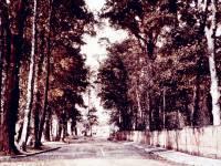 Morden Road