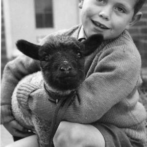 A young boy cuddling a lamb.