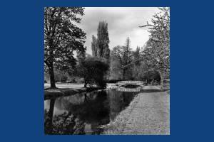 Morden Hall Park: The iron bridge