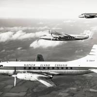 Eland airline trio: Napier
