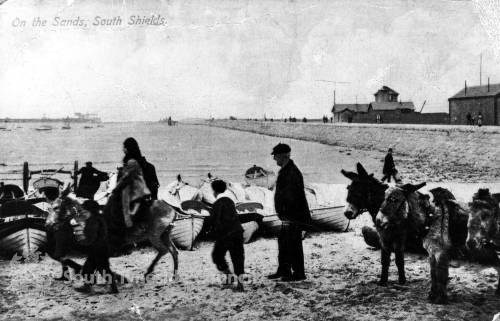 Donkey rides on north beach