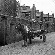 Horse and Cart Between South Eldon Street and South Palmerston Street