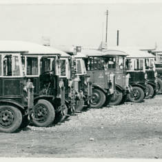 Row of Civic Buses