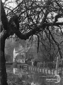 River Wandle, near Crown Mill, Mitcham