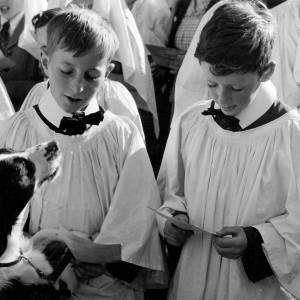 Choir boys at Holy Trinity Church's annual pet service