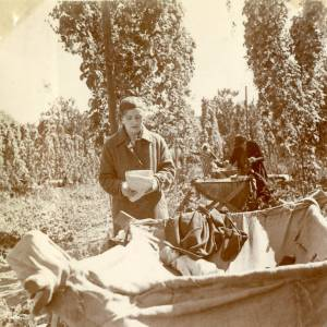 CJS009 Hop picking, c.1930s.jpg