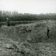 World War II, Bents Park