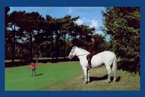 Wimbledon Common: Conservators