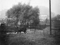Goods Yard near Merton Abbey Station, Colliers Wood