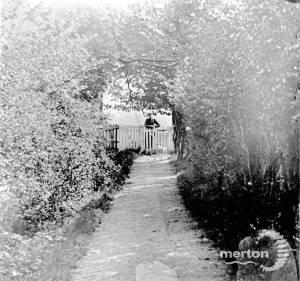 Jeppos Lane, Mitcham