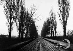 Poplar Road, Merton Park