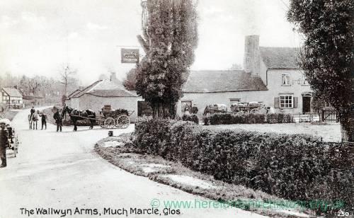 996 Much Marcle - The Wallwyn Arms.jpg