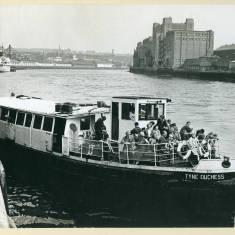 Tyne Duchess