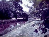 Morden Hall Park, Morden: River