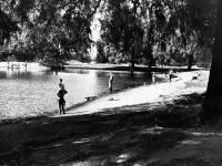 One Island Pond