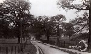 Wimbledon Park Road, Wimbledon