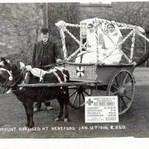 Red Cross donkey and cart with amounts realised to January 1916, Ledbury