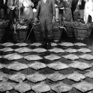 A fish market.
