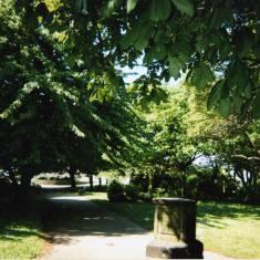 'Summer's Shade' St Hilda's Churchyard
