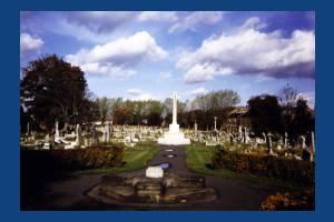 Graveyard and War Memorial, Mitcham Parish Church