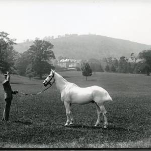 G36-003-04 Man holding single horse. Large country house in background.jpg