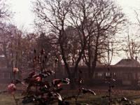 Mitcham Court, Cricket Green: Rear View
