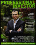 Professional Investor 2010-2011 Winter
