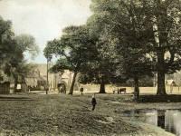 Cranmer Green, Mitcham
