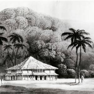 Dr Makinnon's residence, painting