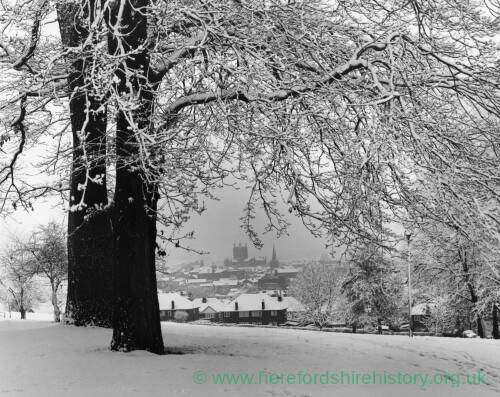Winter at Churchill Gardens Hereford.