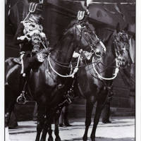 Lancashire Hussars, horses