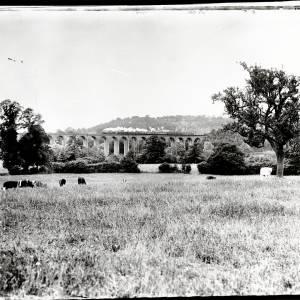 The Viaduct, Ledbury with steam train crossing