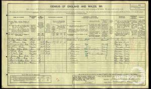 1911 census - 19 Chestnut Road, Raynes Park
