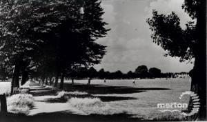 Figges Marsh, Mitcham