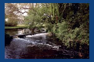 The Weir, Morden Hall Park, Morden