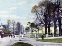 Westside, Wimbledon Common