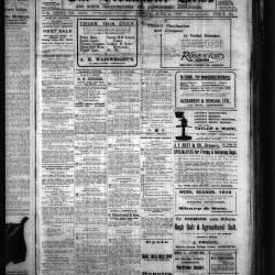 Leominster News - June 1919